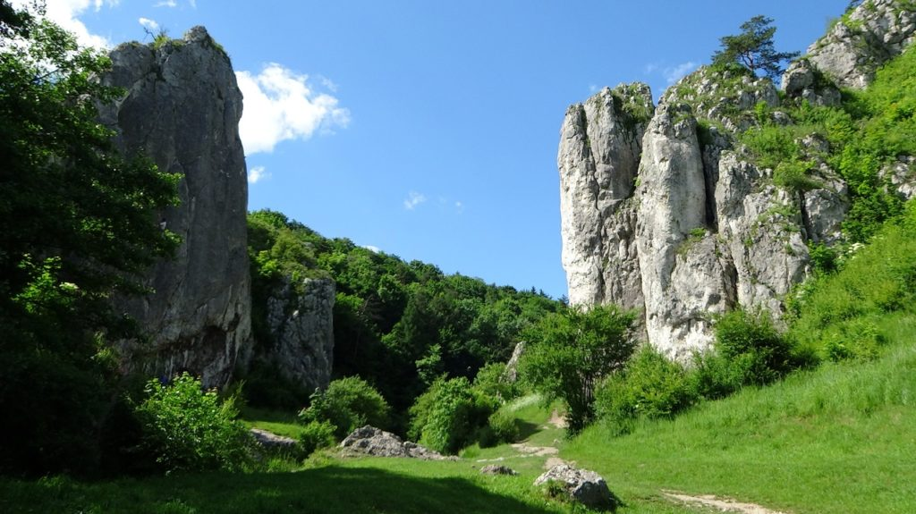 Les stages se déroulent dans le Jura (39)